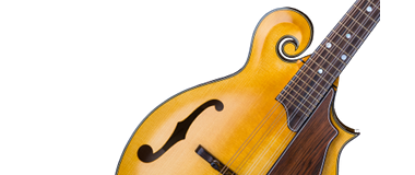 Heiden Stringed Instruments